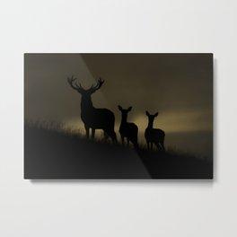 Red Deer at dawn Metal Print
