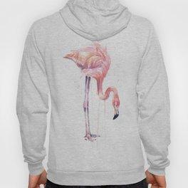 Flamingo Painting Watercolor Hoody