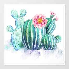 Green Cactus and Flowers Canvas Print