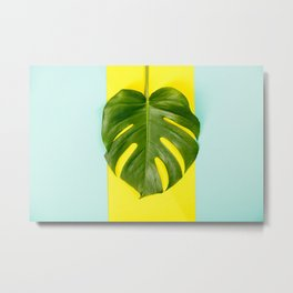 Monstera leaf on blue and yellow background Metal Print
