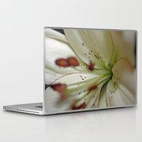 burgundy Laptop & iPad Skins featuring Burgundy Lining by Astrid Ewing