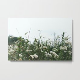 Flowers on Mulholland Metal Print