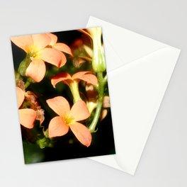 Kalanchoe Blossfeldiana 1 Stationery Cards