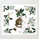 Monkey World: Amber-Ella - White by fifikoussout