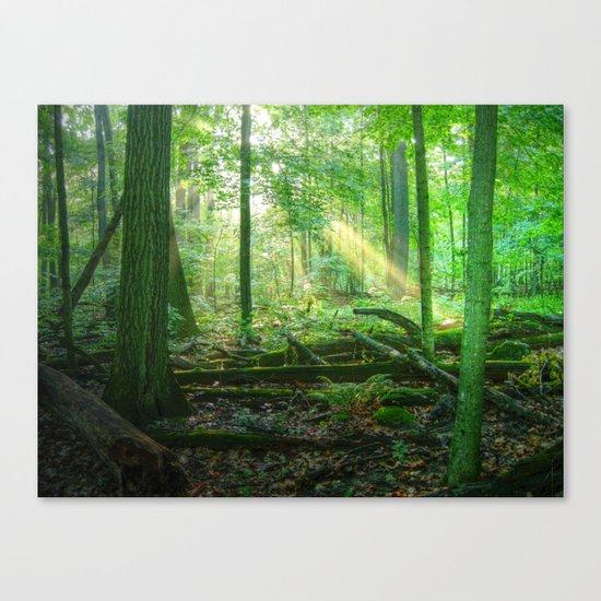 Devil's Lake State Park Canvas Print