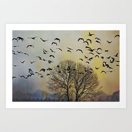 Bird Watching  - JUSTART © Art Print
