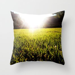 and the grass is always greener.. Throw Pillow