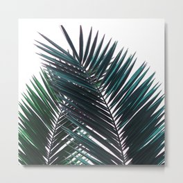 palm leaf poster Metal Print