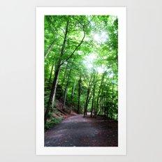 Ithaca Art Print