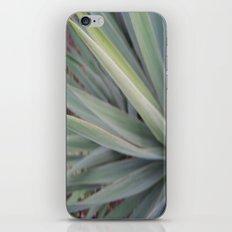 spikes iPhone & iPod Skin
