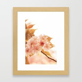 Sweet Pink Spring Framed Art Print