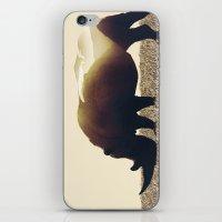 rhino iPhone & iPod Skins featuring Rhino by Yaroslav Greben