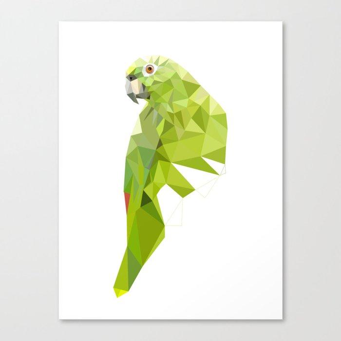 Parrot art Southern mealy amazon parrot Leinwanddruck
