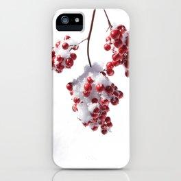 Delicate Snow iPhone Case