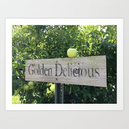 Golden Delicious Art Print