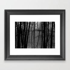 Trees in winter Framed Art Print