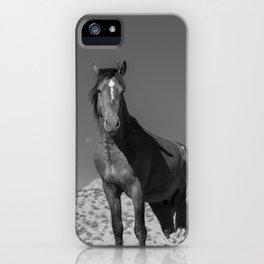 Wild_Horses B & W 3501 - Nevada iPhone Case