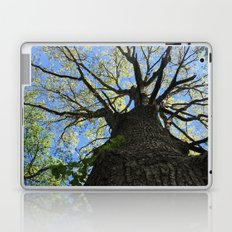 Forest Therapy Laptop & iPad Skin