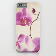 Pink Lady Slim Case iPhone 6s