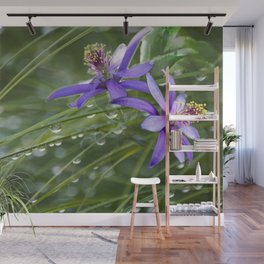 Meadow Dew Wall Mural