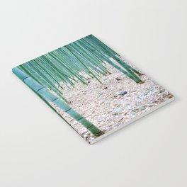 The Bamboo Grove, Arashiyama, Kyoto Notebook