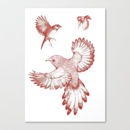 A beat of wings Canvas Print