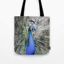 Great Peacock 215 A Tote Bag