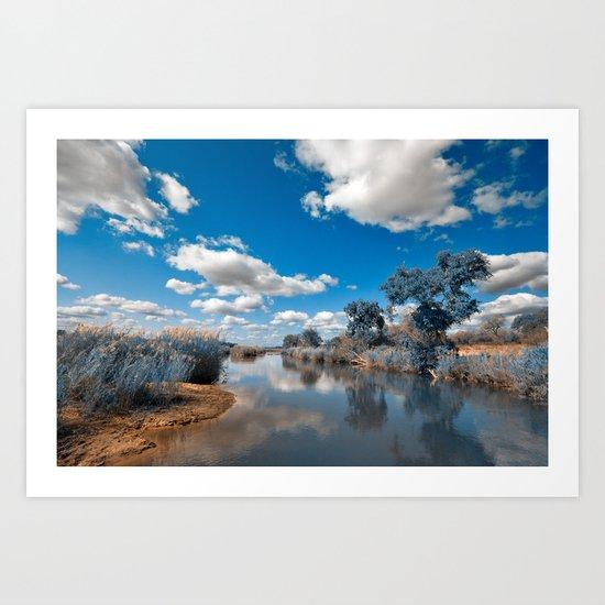 Kruger Park Landscape - Winter Blue Art Print