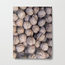 Nuts over You Metal Print