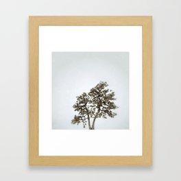 Tree #05 Framed Art Print
