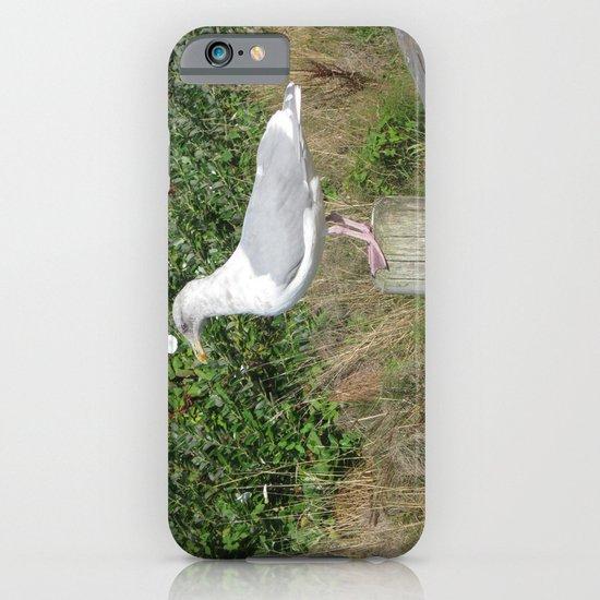 My Buddy iPhone & iPod Case