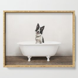 Border Collie in Vintage Bathtub Serving Tray