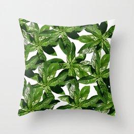 Basil Leaves pattern Throw Pillow