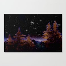 My world at night. Canvas Print