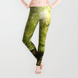 A house in the lake Leggings