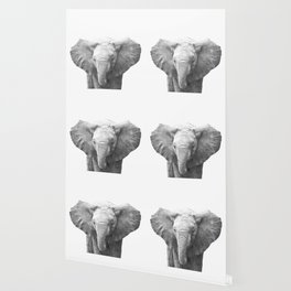 Black and White Baby Elephant Wallpaper