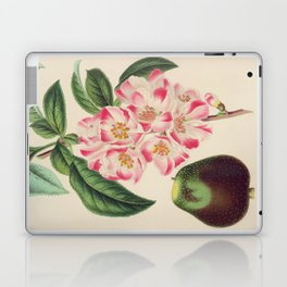 Cydonia Japonica Vintage Botanical Floral Flower Plant Scientific Laptop & iPad Skin