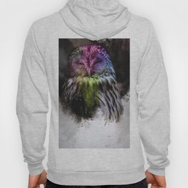 Abstract colorful owl Hoody