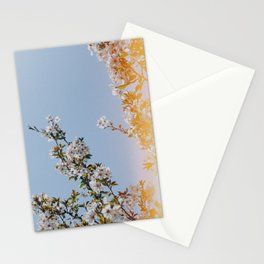 Spring Flowers III Stationery Cards