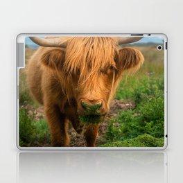 Highland Cow Eating Grass, Isle of Mull, Scotland, UK Laptop & iPad Skin