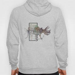 rose-Fish-bone dinosaur Hoody
