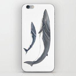 Fin whale iPhone Skin