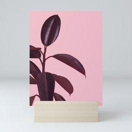Burgundy Rubber Plant Mini Art Print