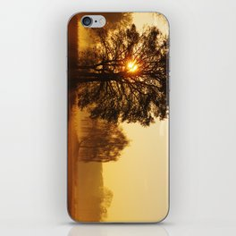 Lights Dreams in the morning iPhone Skin