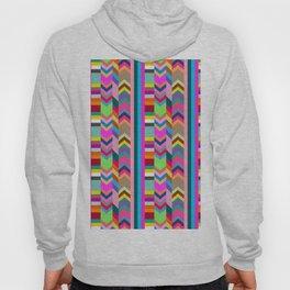 Striped Kilim in Warm Multi Hoody