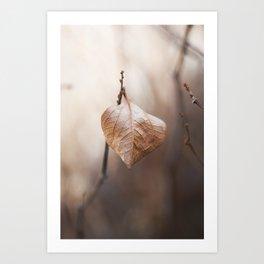 Brown Winter Leaf Art Print