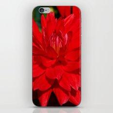Deep Love iPhone & iPod Skin