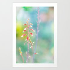 Aloe Plant In Soft Gentle Colours Art Print