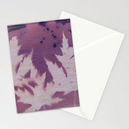 Cyanotype No. 11 Stationery Cards