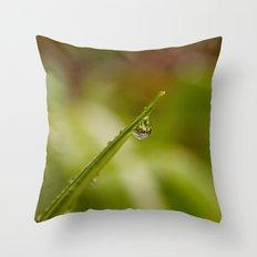 Morning Raindrop Throw Pillow